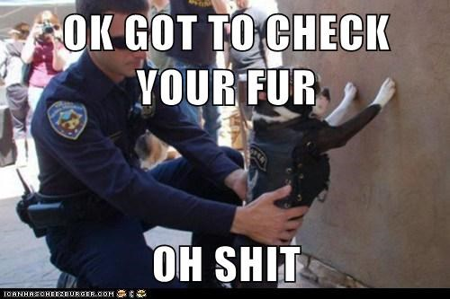 OK GOT TO CHECK YOUR FUR  OH SHIT