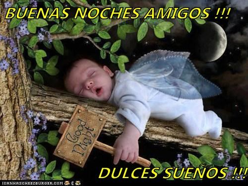 BUENAS NOCHES AMIGOS !!!  DULCES SUEÑOS !!!