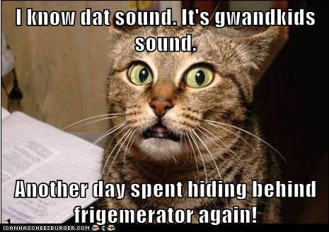 I know dat sound. It's gwandkids sound.  Another day spent hiding behind frigemerator again!