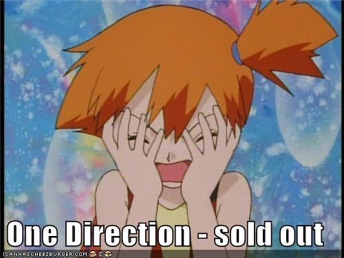 One Direction - sold out