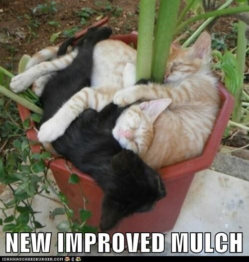 NEW IMPROVED MULCH
