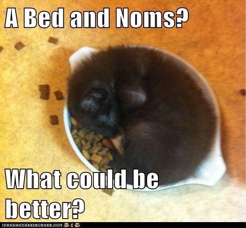 A Bed and Noms?  What could be better?