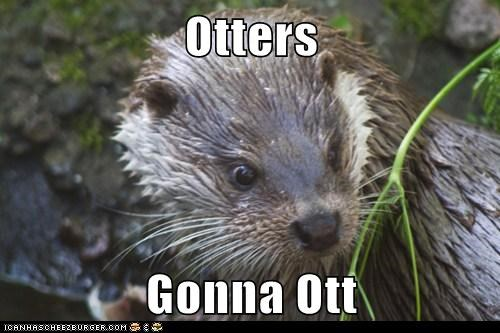 captions,haters gonna hate,otter,puns,ridin dirty