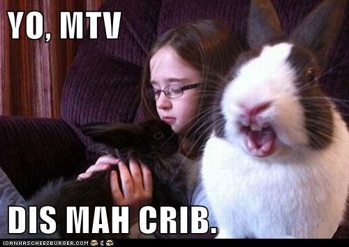 bunnies,camera,crib,mtv cribs,rabbits,reality show,talking