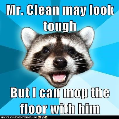 Animal Memes: Lame Pun Coon - Wipe That Smirk Off His Face
