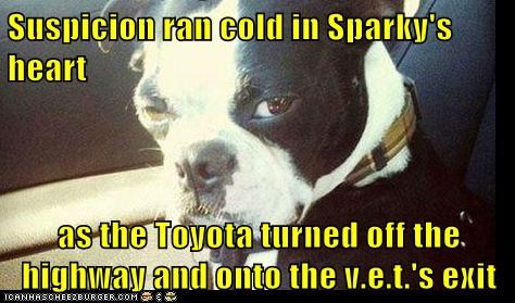Suspicion ran cold in Sparky's heart  as the Toyota turned off the highway and onto the v.e.t.'s exit