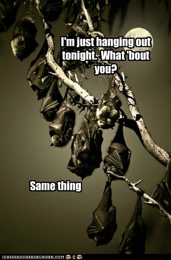 I'm just hanging out tonight.  What 'bout you?