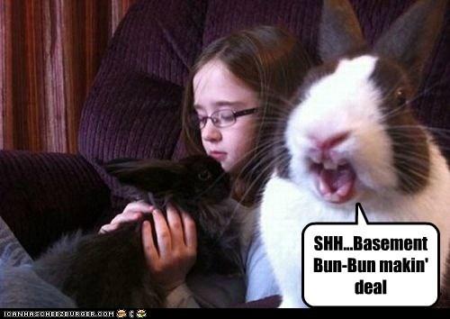 basement,bunny,holding,human,kid,making a deal,minion,shh