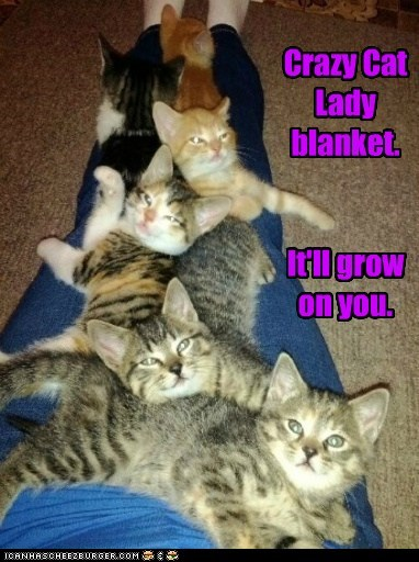 Crazy Cat Lady blanket.   It'll grow on you.