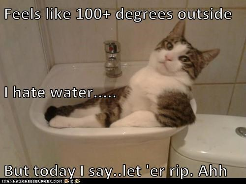 Feels like 100+ degrees outside I hate water..... But today I say..let 'er rip. Ahh