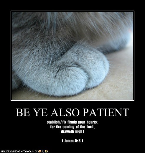BE YE ALSO PATIENT