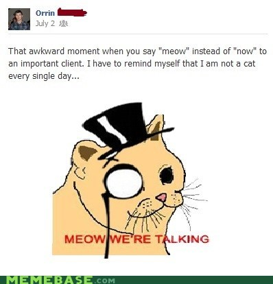 Meow This is Awkward