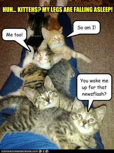 They're not selfish, they're kittehs.