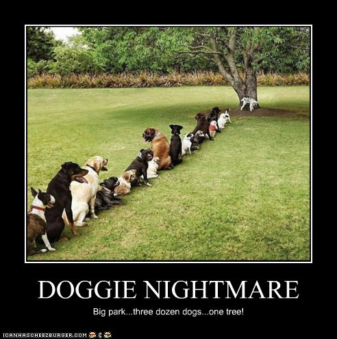 DOGGIE NIGHTMARE