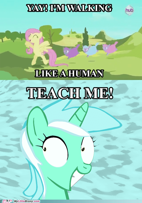 Fluttershy knows how it's done