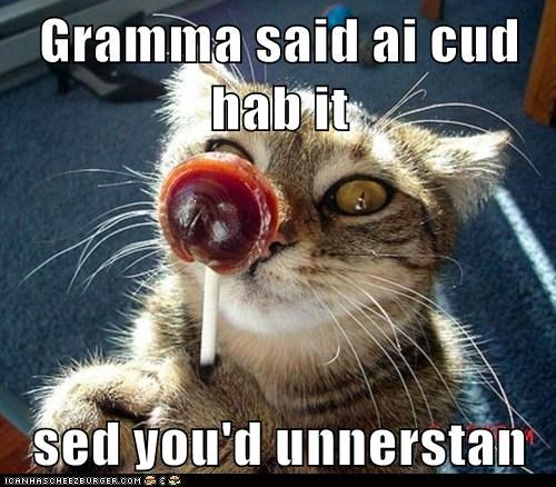 Gramma said ai cud hab it  sed you'd unnerstan
