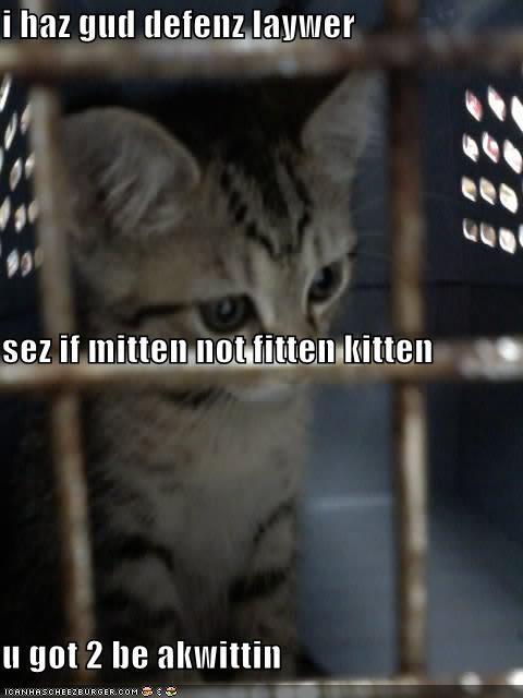 i haz gud defenz laywer sez if mitten not fitten kitten u got 2 be akwittin