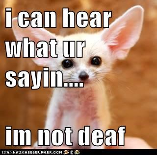 i can hear what ur sayin....  im not deaf