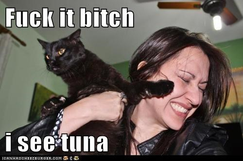 Fuck it bitch  i see tuna