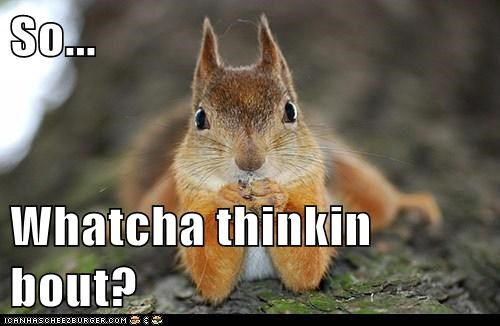 So...  Whatcha thinkin bout?