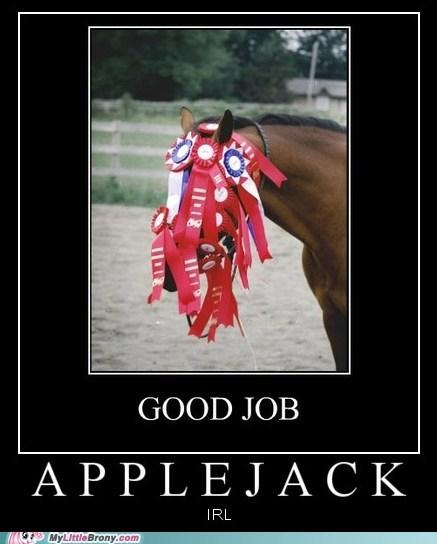 Applejack IRL