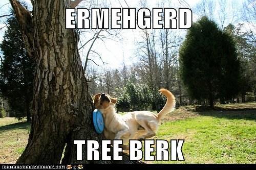 ERMEHGERD  TREE BERK