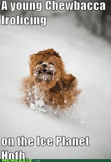 Frolic With Me, Like You Did in the Snow on Hoth