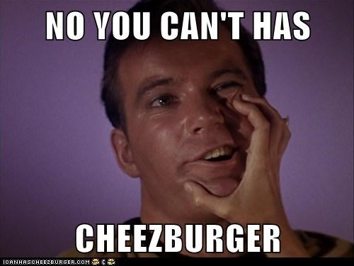 NO YOU CAN'T HAS  CHEEZBURGER