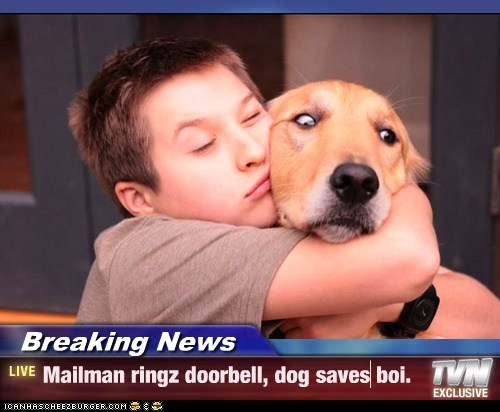Breaking News - Mailman ringz doorbell, dog saves boi.