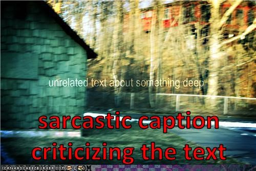sarcastic caption criticizing the text