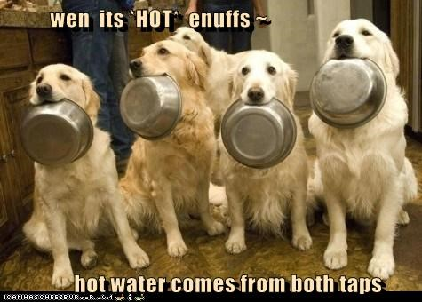wen  its *HOT*  enuffs ~         hot water comes from both taps