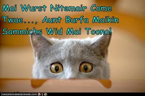 Mai Wurst Nitemair Come Twue..., Aunt Burfa Maikin Sammichs Wid Mai Toona!