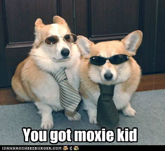 You got moxie kid