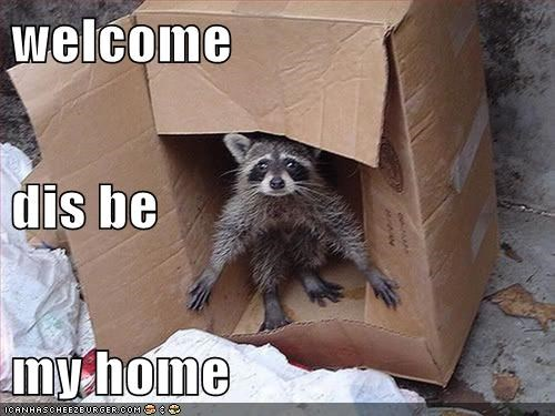 welcome dis be my home