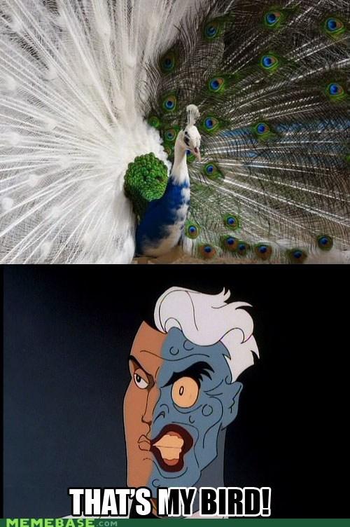 batman,peacock,superheroes,two face