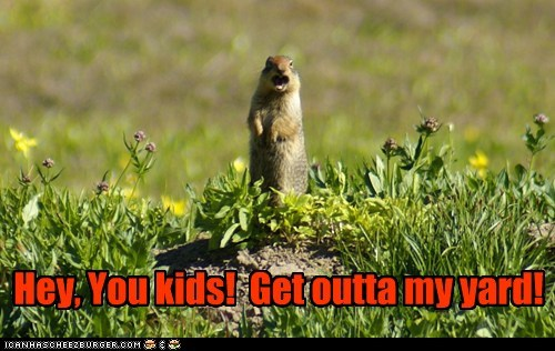 angry,don't make me come over t,dont-make-me-come-over-there,get off my lawn,gopher,kids,old,yard