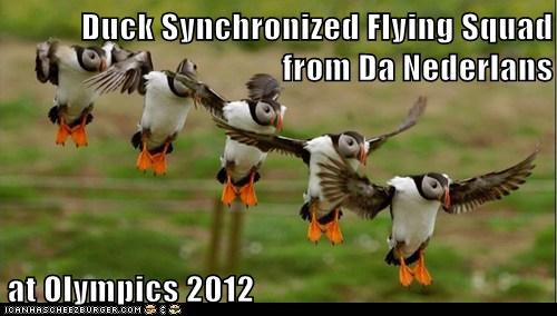 Duck Synchronized Flying Squad from Da Nederlans  at Olympics 2012