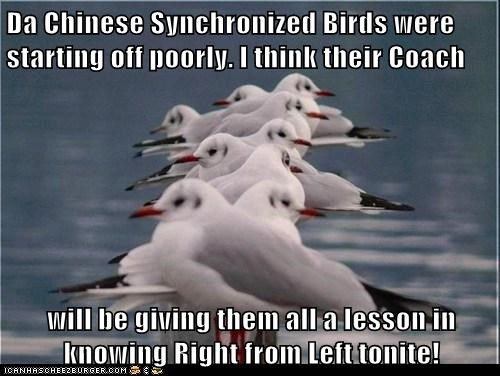 Da Chinese Synchronized Birds were starting off poorly. I think their Coach   will be giving them all a lesson in knowing Right from Left tonite!