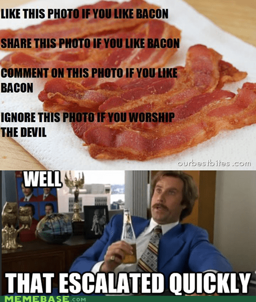 Serious Bacon