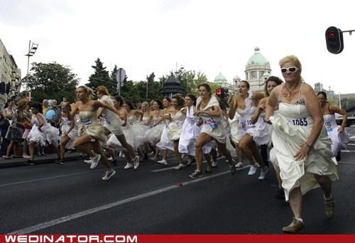brides,funny wedding photos,race