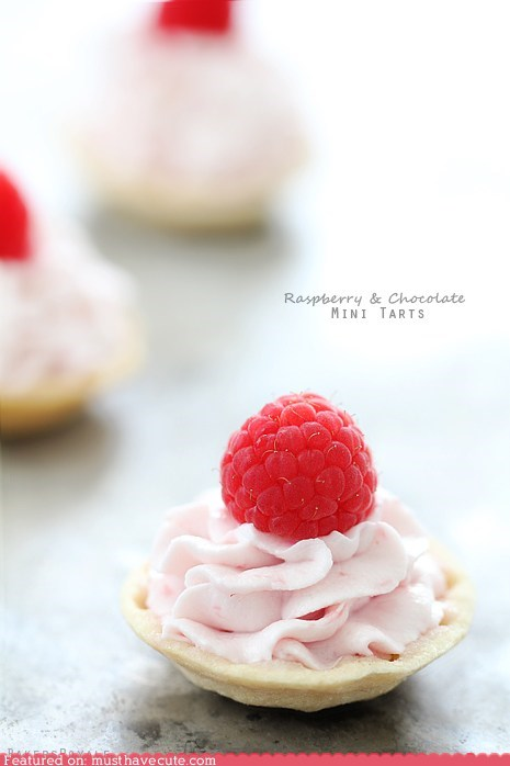 berry,chocolate,crust,epicute,miniature,raspberry,tarts
