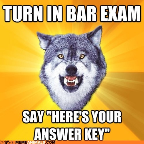 Animal Memes: Courage Wolf: Taking Tests Like a Boss