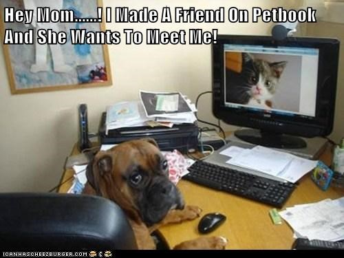 Hey Mom......! I Made A Friend On Petbook And She Wants To Meet Me!