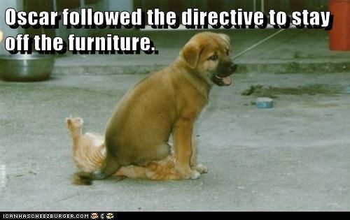 Oscar followed the directive