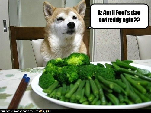 aprils fools,do not want,dogs,joke,shiba inu,veggies