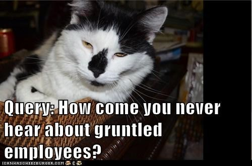 Query: How come you never hear about gruntled employees?