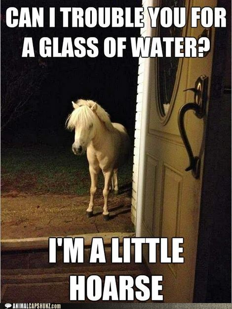 classic,hoarse,horse,little,pony,puns,water