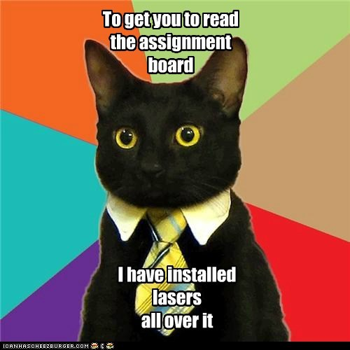 Animal Memes: Business Cat - It's Called Employee Incentive