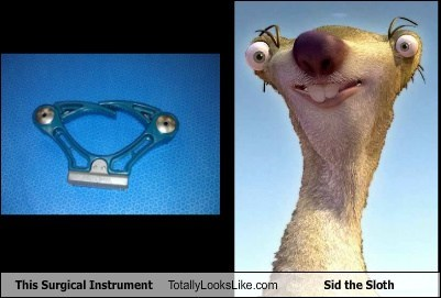 This Surgical Instrument Totally Looks Like Sid the Sloth