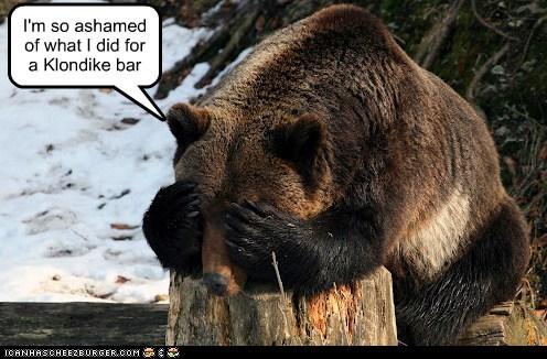 ashamed,bear,captions,eyes covered,hiding,klondike bar,Sad